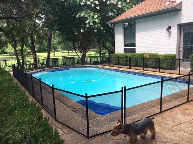 Pet fence Keeping this little puppy safe with a two foot tall pet fence in Mansfield
